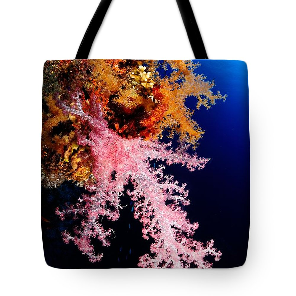 Underwater Tote Bag featuring the photograph Red Sea Coral by Iñigo Gutierrez Photo