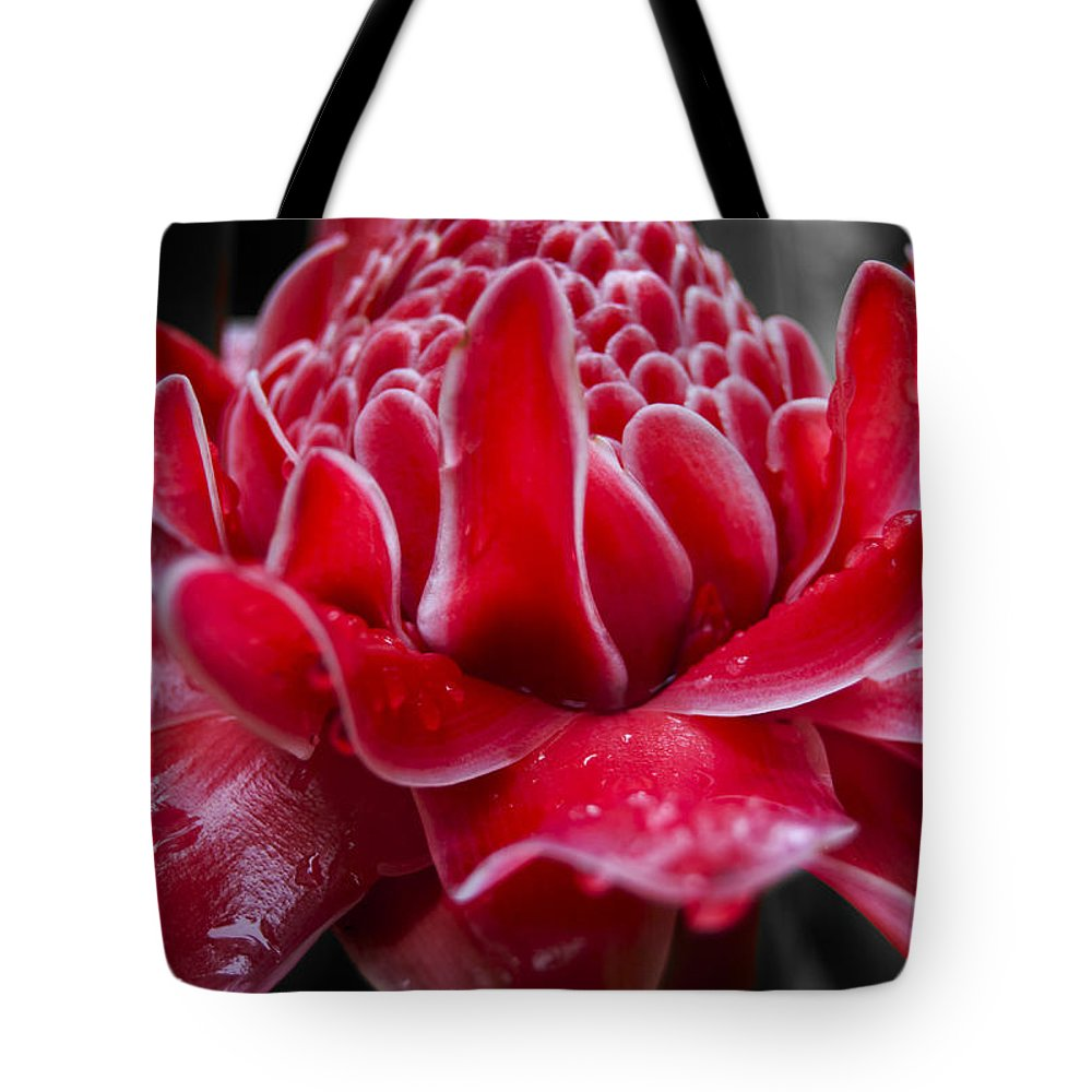 Red Tote Bag featuring the photograph Red Seduction by Sher Hortillosa