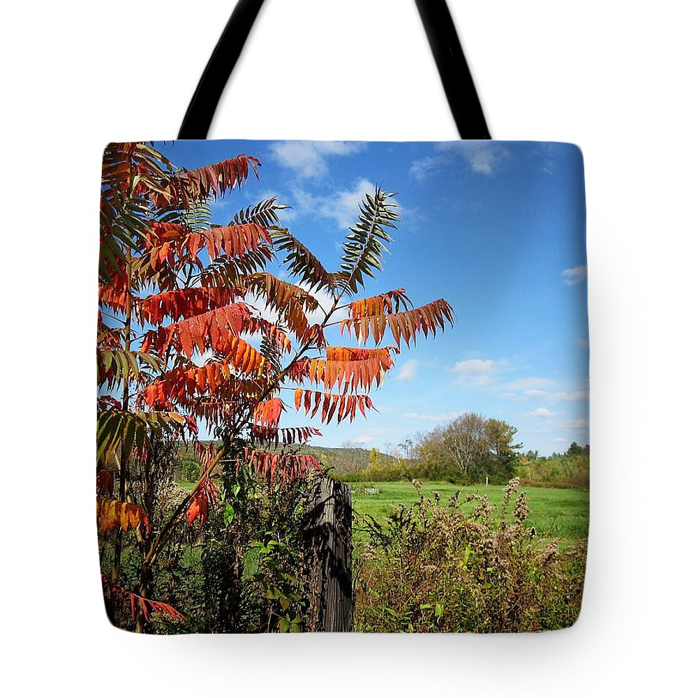 Field Tote Bag featuring the photograph Red Sumac Tree by MTBobbins Photography