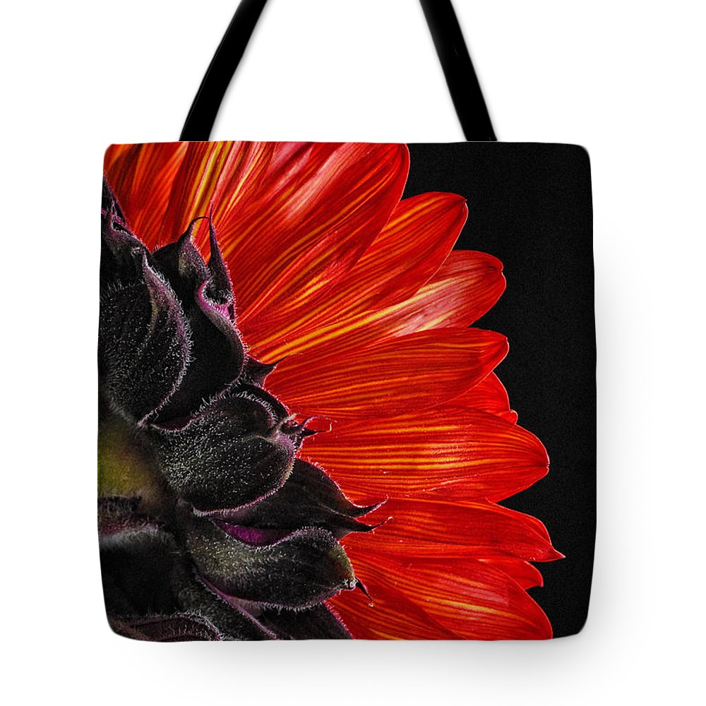 Red Sunflower Tote Bag featuring the photograph Red Sunflower Vii by Saija Lehtonen