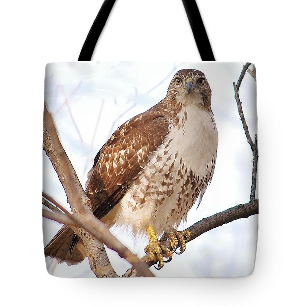 Common Tote Bags