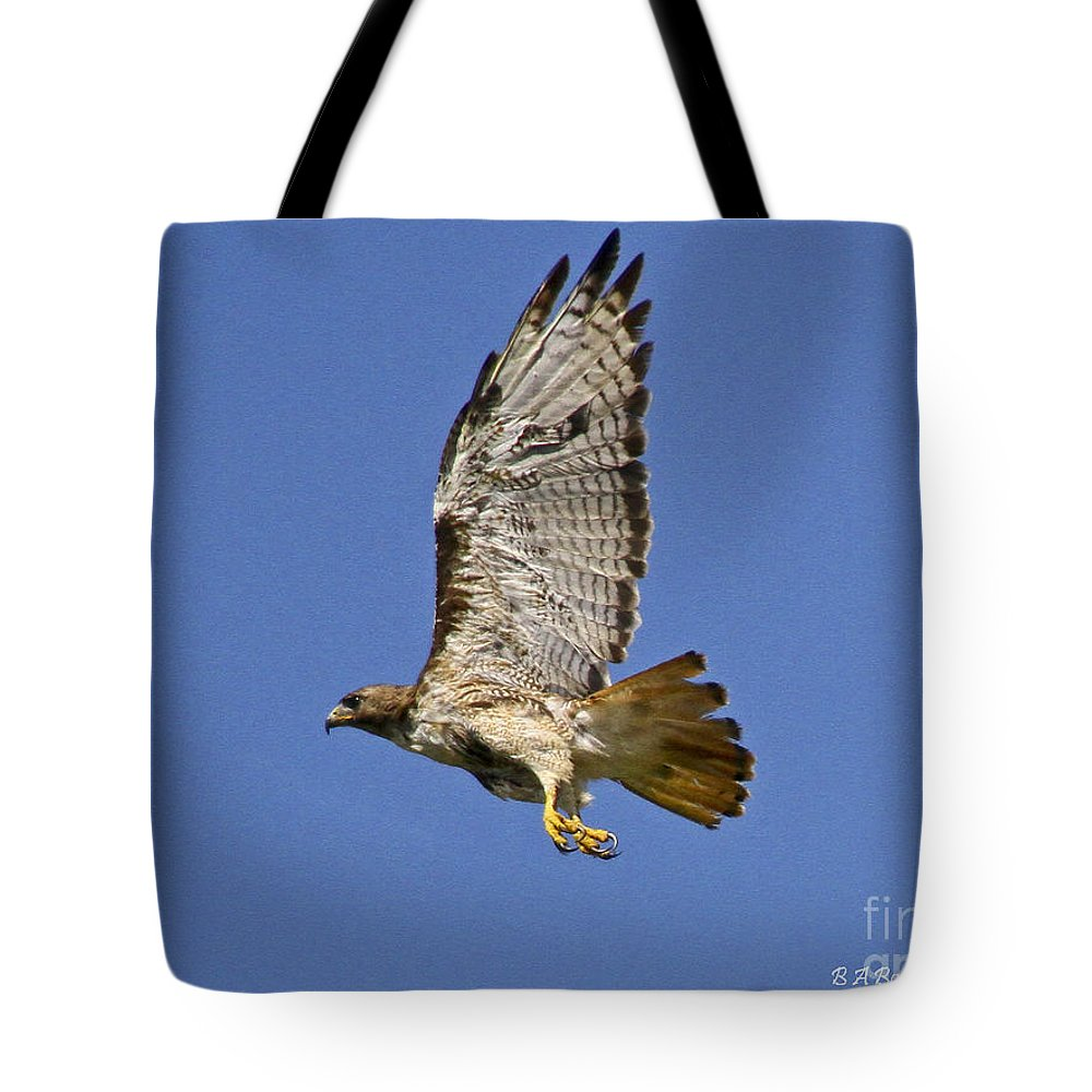 Red-tailed Hawk Tote Bag featuring the photograph Red-tailed Hawk Takeoff by Barbara Bowen