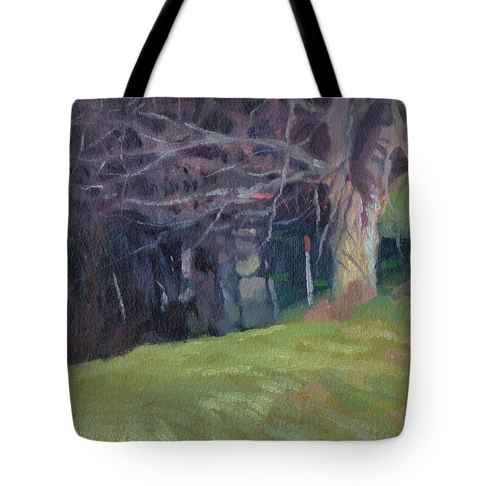 Landscape Tote Bag featuring the painting Red Top Fence Post by John L Campbell