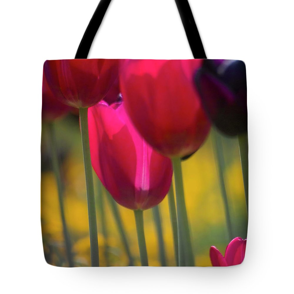 Tulip Tote Bag featuring the photograph Red Tulips by Heiko Koehrer-Wagner