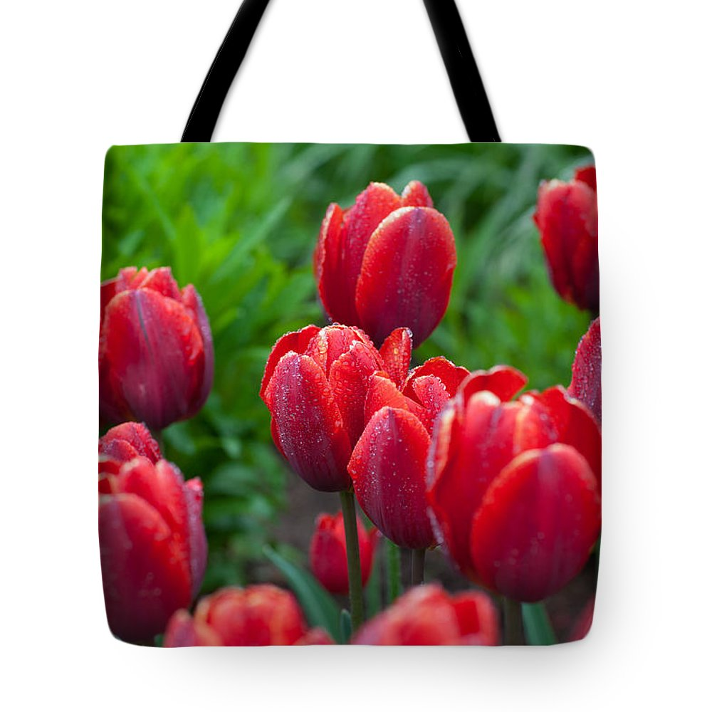 Red Tote Bag featuring the photograph Red Tulips by Ralf Kaiser