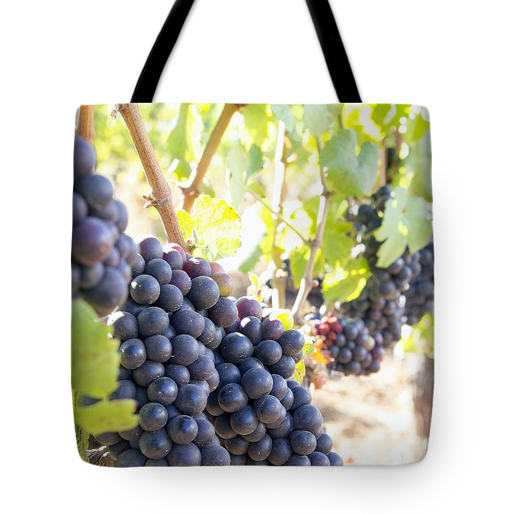 Red Tote Bag featuring the photograph Red Wine Grapes Hanging On Grapevines Vertical by Jit Lim