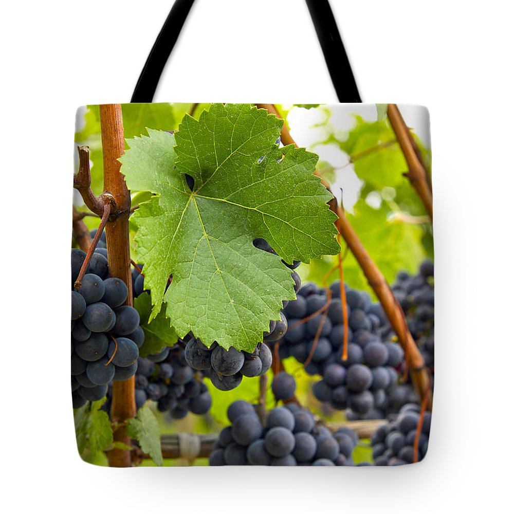 Red Tote Bag featuring the photograph Red Wine Vineyard 3 by David Gn