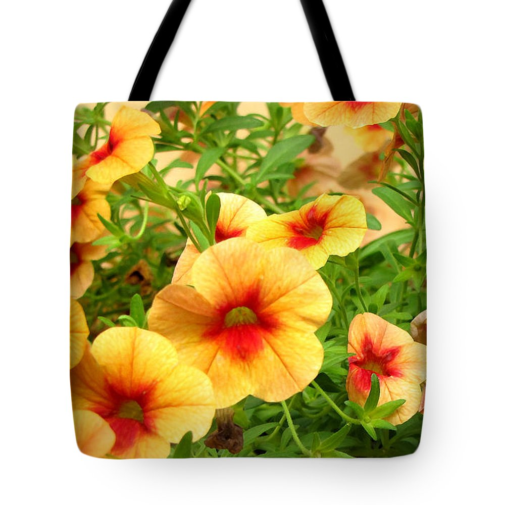 Duane Mccullough Tote Bag featuring the photograph Red Yellow Morning Glories by Duane McCullough