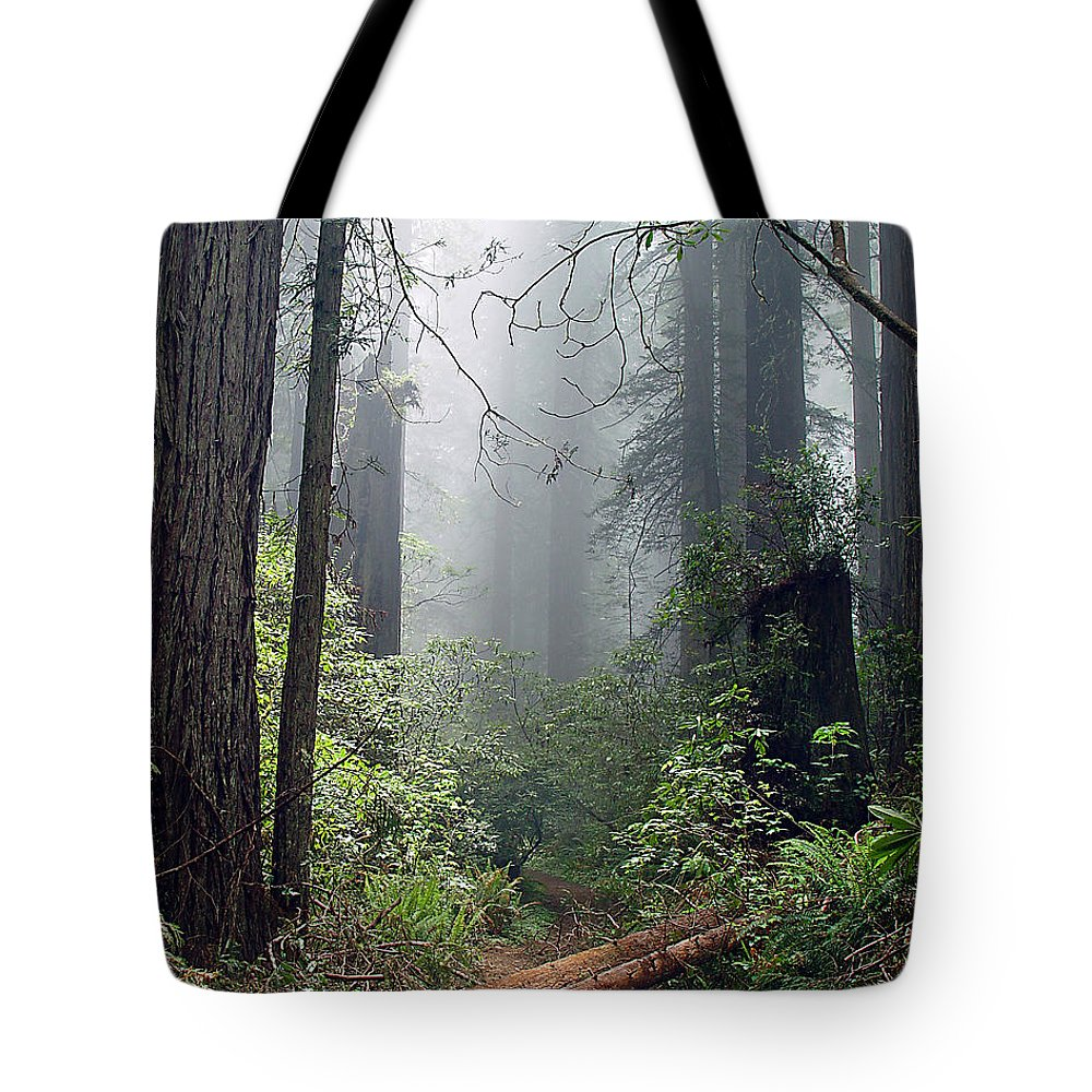 Redwoods Tote Bag featuring the photograph Redwood Mist by John Bushnell