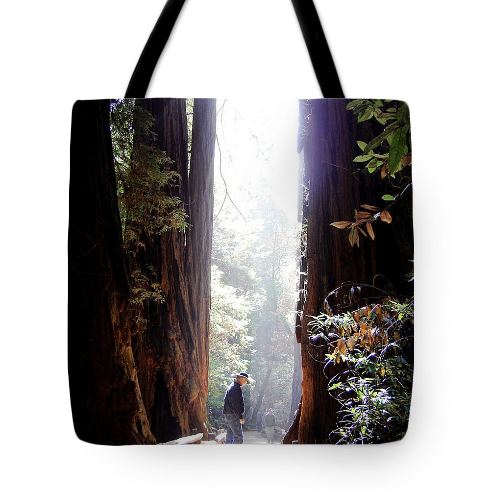 Pathway Tote Bag featuring the photograph Redwood Path by Mary Rogers