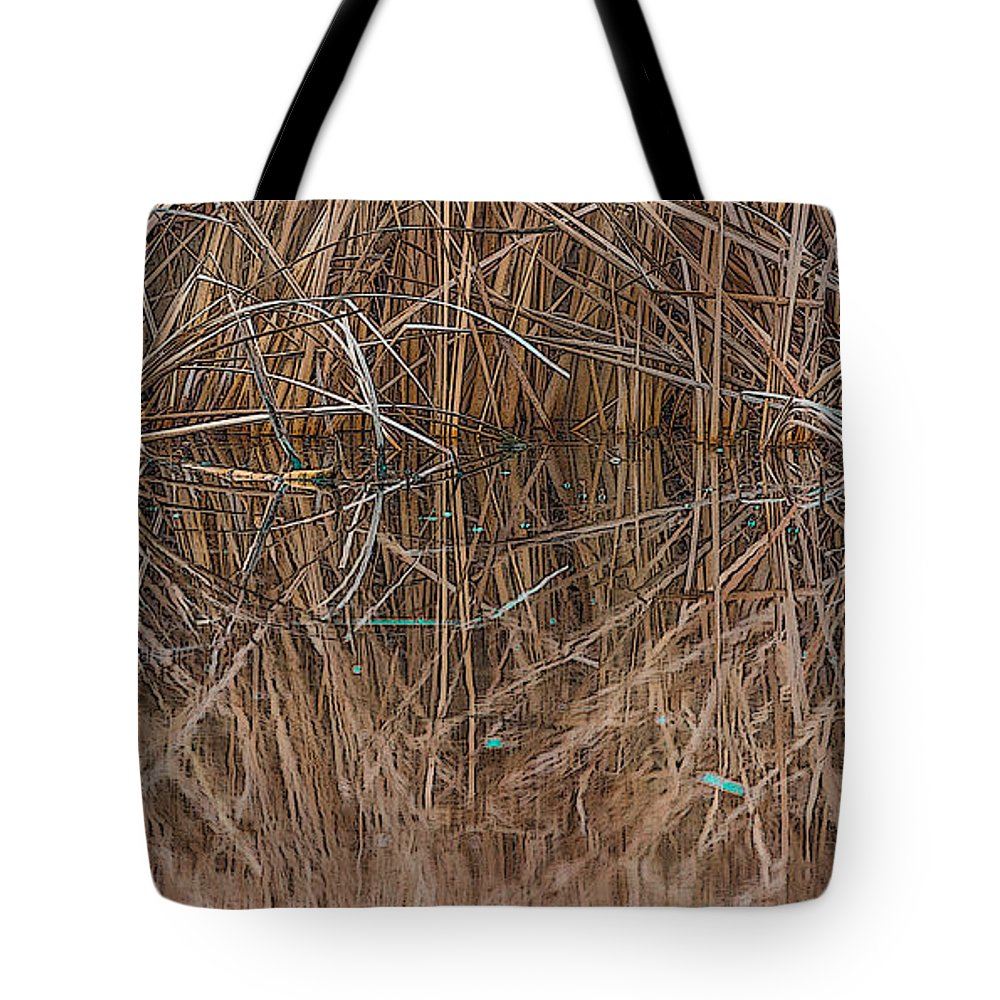 Phragmites Australis Tote Bag featuring the photograph Reed Water Reflection by Jivko Nakev