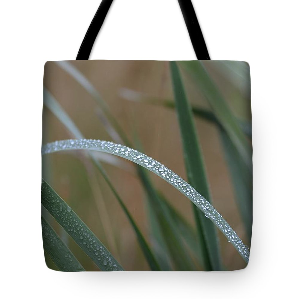 Rain Tote Bag featuring the photograph Reeds And Rain by Ian Ashbaugh