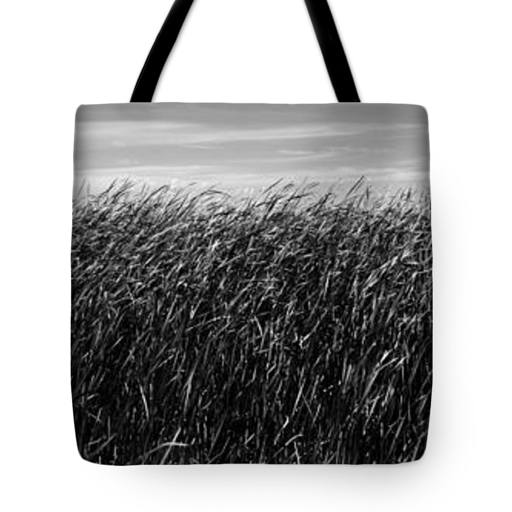 Landscape Tote Bag featuring the photograph Reeds And Sky by Donald Erickson