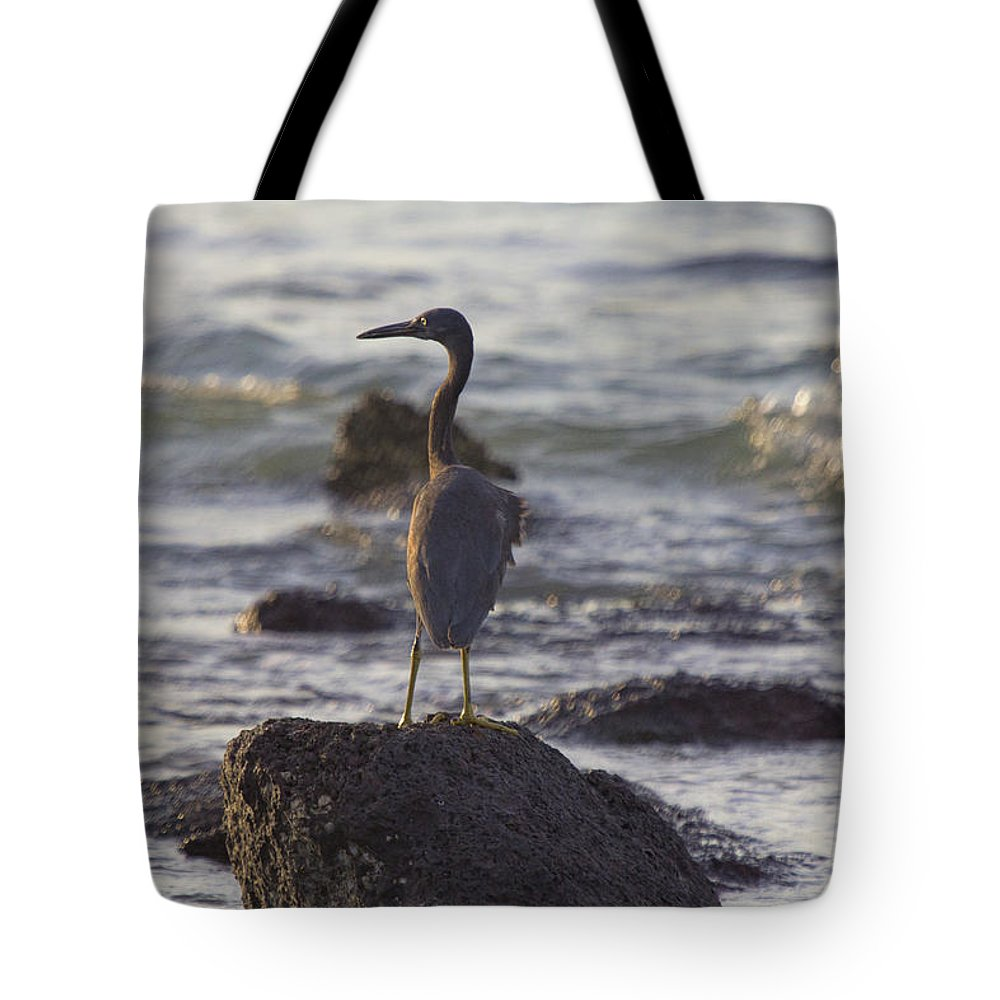 Reef Egret Tote Bag featuring the photograph Reef Egret by Douglas Barnard