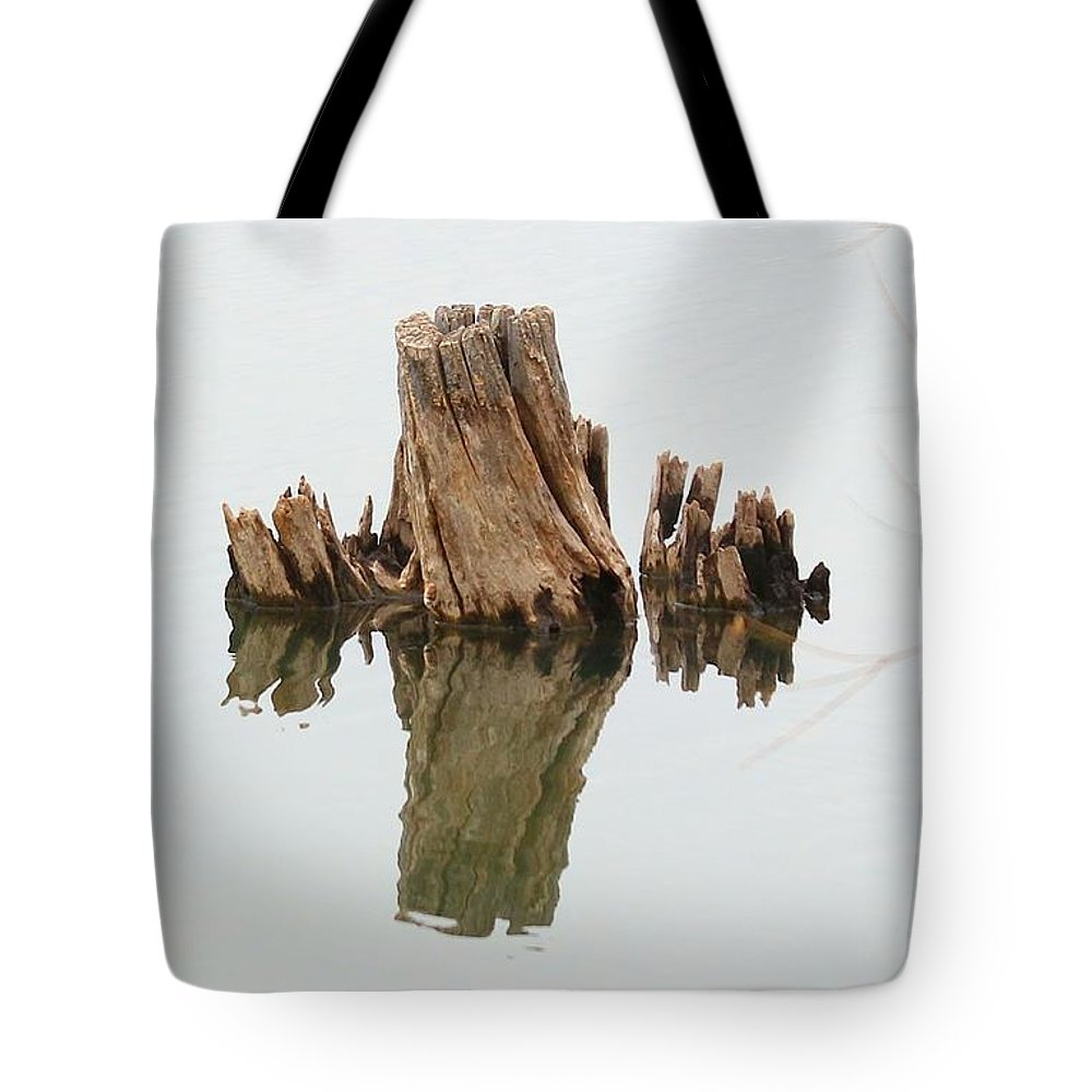 Trees Tote Bag featuring the photograph Reflecting Back To Once Was by Angela Koehler