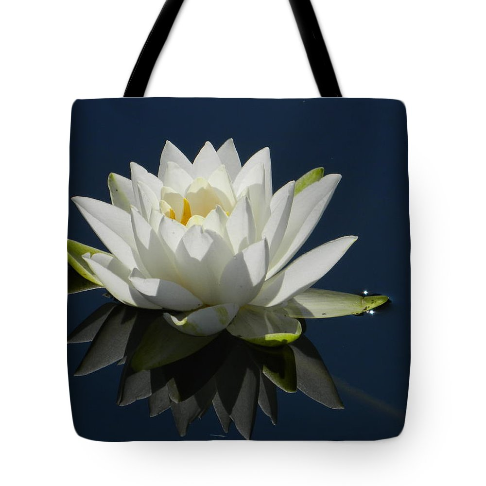 Water Tote Bag featuring the photograph Reflecting Water Lilly by Nicki Bennett
