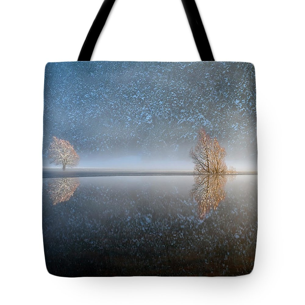 Scenics Tote Bag featuring the photograph Reflections In A Lake In Winter, French by Jean-pierre Pieuchot
