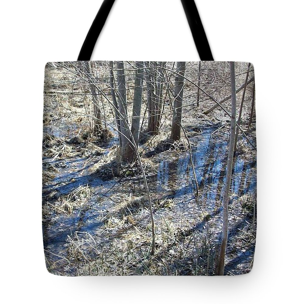 Trees Tote Bag featuring the photograph Reflections Of Early Spring 3 by Sharon Ackley