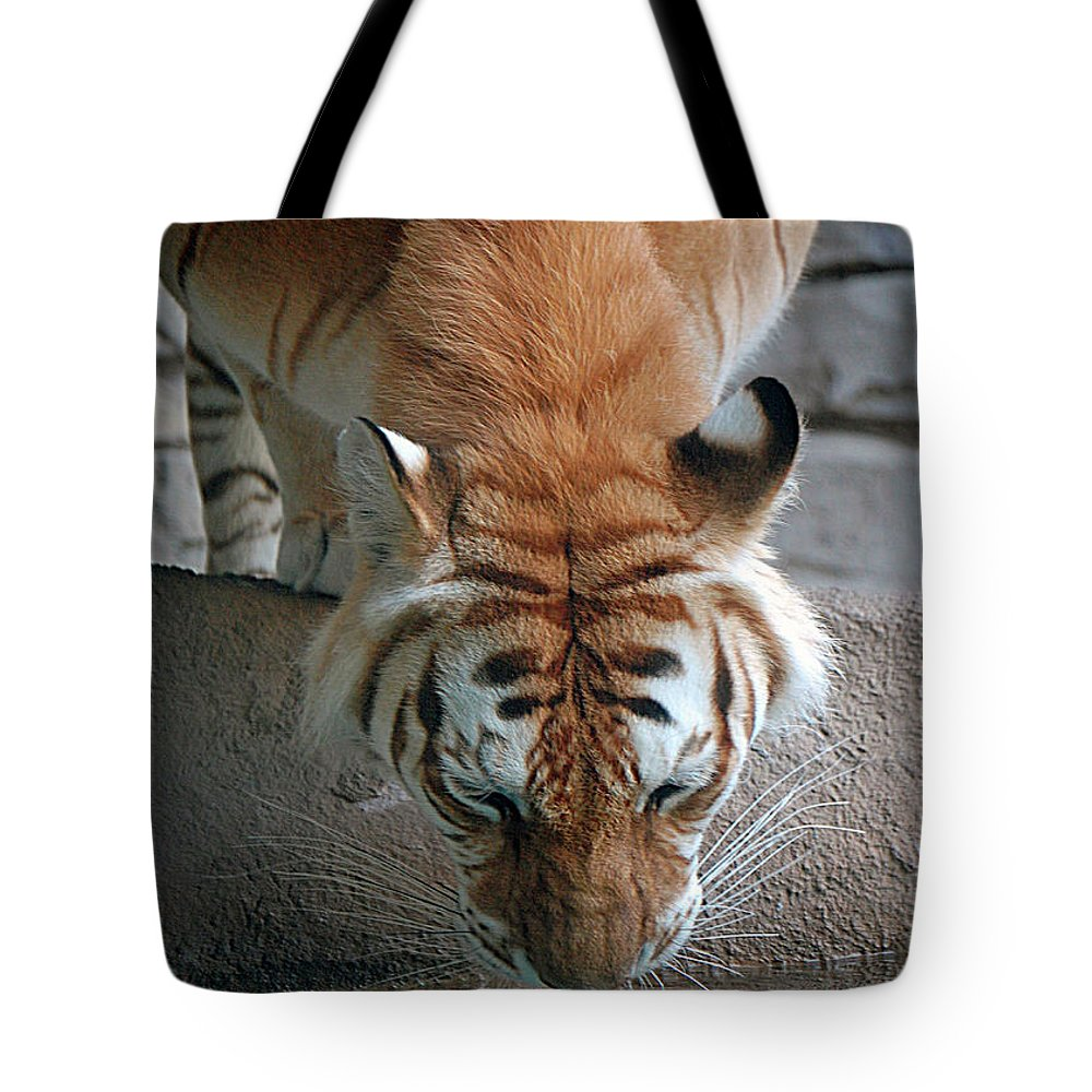 Tiger Tote Bag featuring the digital art Reflections Of The Wild by DigiArt Diaries by Vicky B Fuller