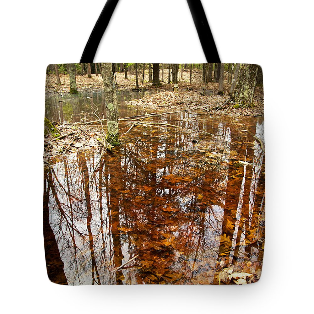Forest Tote Bag featuring the photograph Reflections On A Forest Floor by Mary Lee Dereske