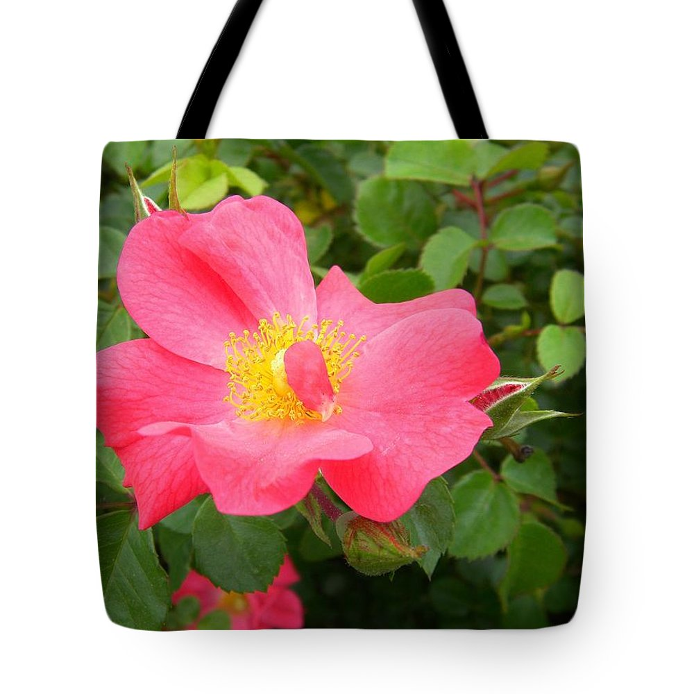 Pink Tote Bag featuring the photograph Refreshingly Spring by Matthew Seufer