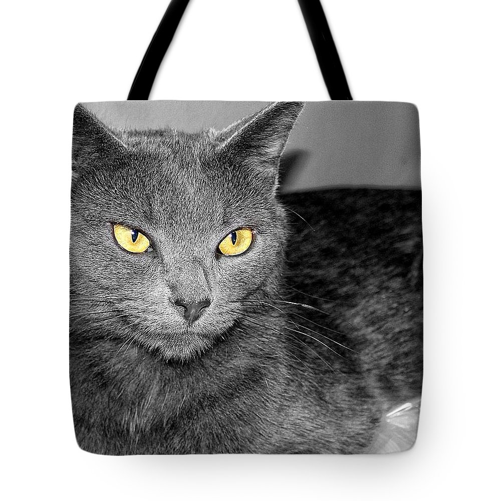 Yellow Eyes Tote Bag featuring the photograph Regal by Joyce Baldassarre