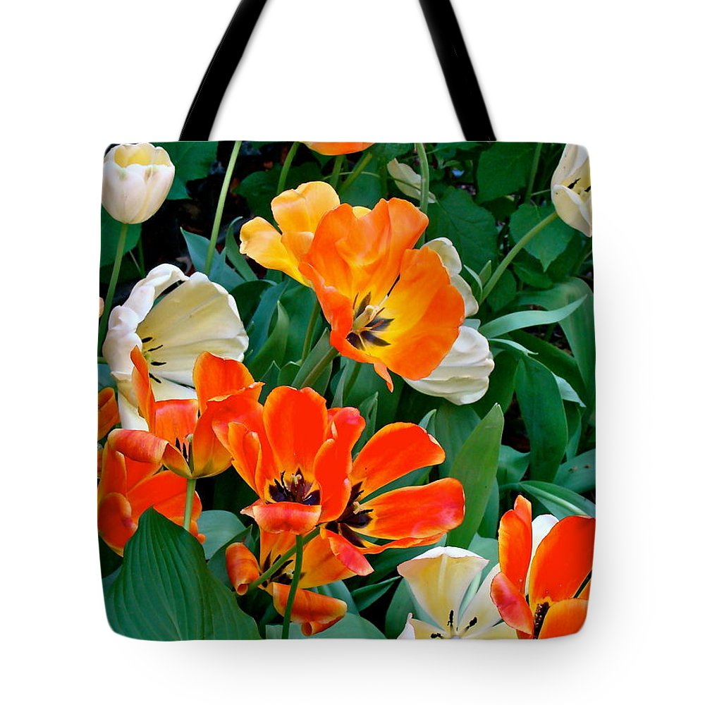 Tulips Tote Bag featuring the photograph Rembrant's Garden by Ira Shander