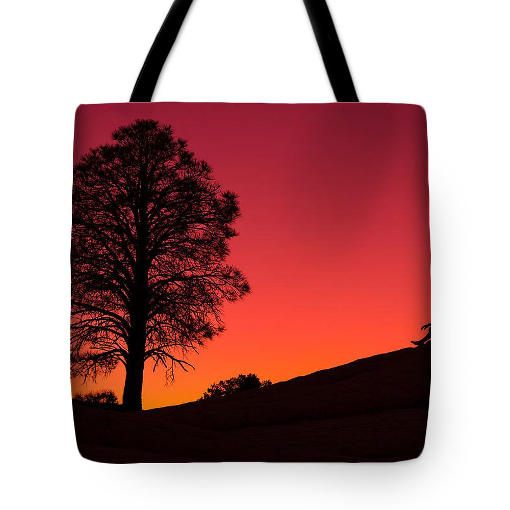 Vermilion Cliffs Tote Bag featuring the photograph Reminiscing by Chad Dutson