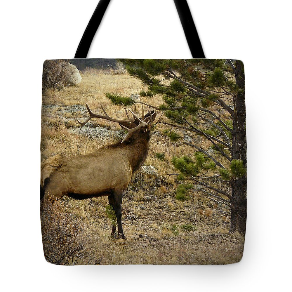 Buck Tote Bag featuring the photograph Removing Velvet by David Kehrli