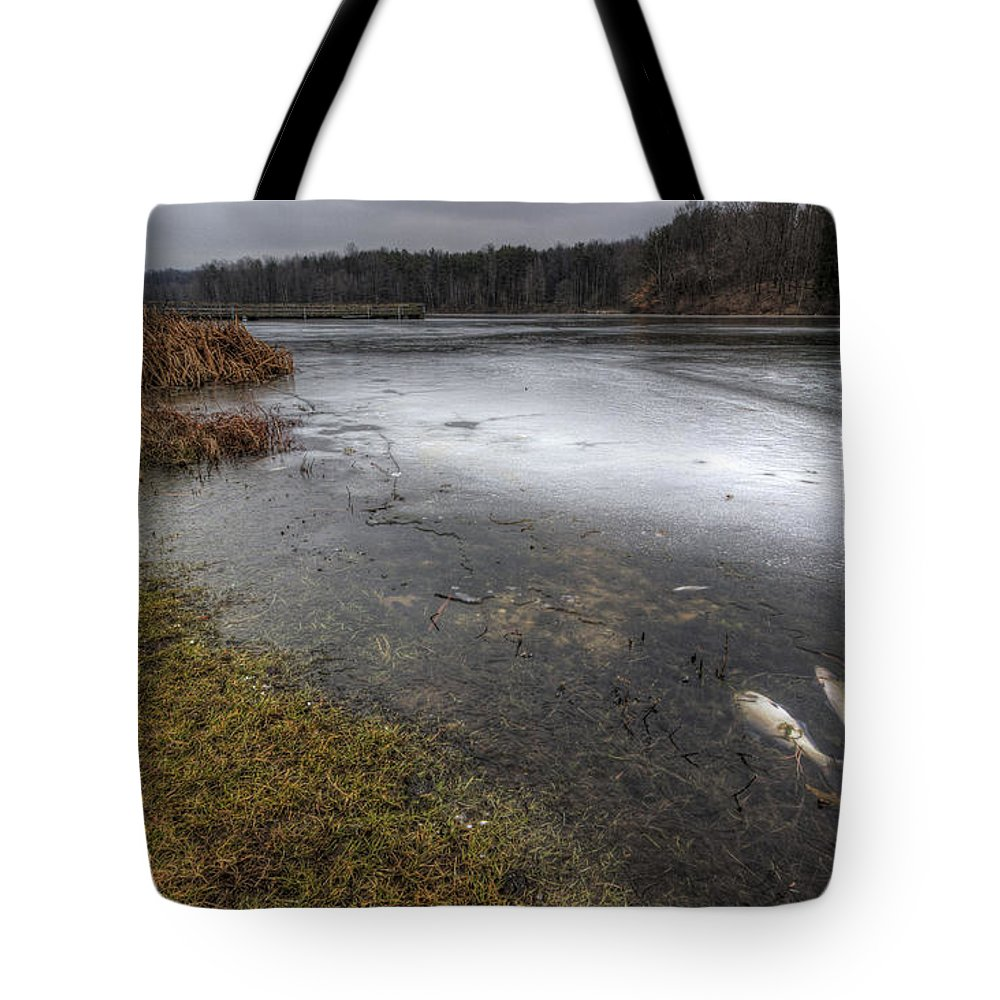 Reservoir Tote Bag featuring the photograph Reservoir In Winter by David Dufresne