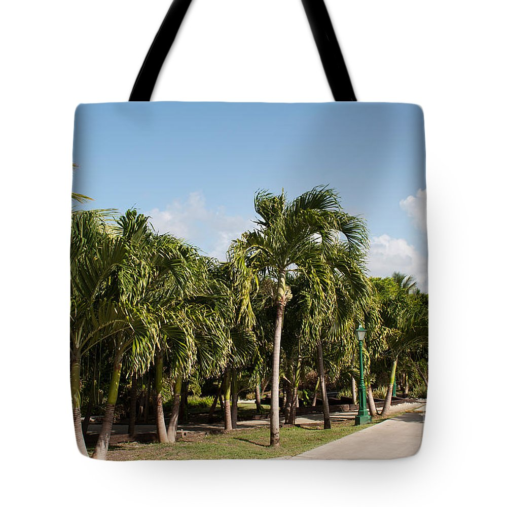 Pathway Tote Bag featuring the photograph Resort Pathway by Luis Alvarenga