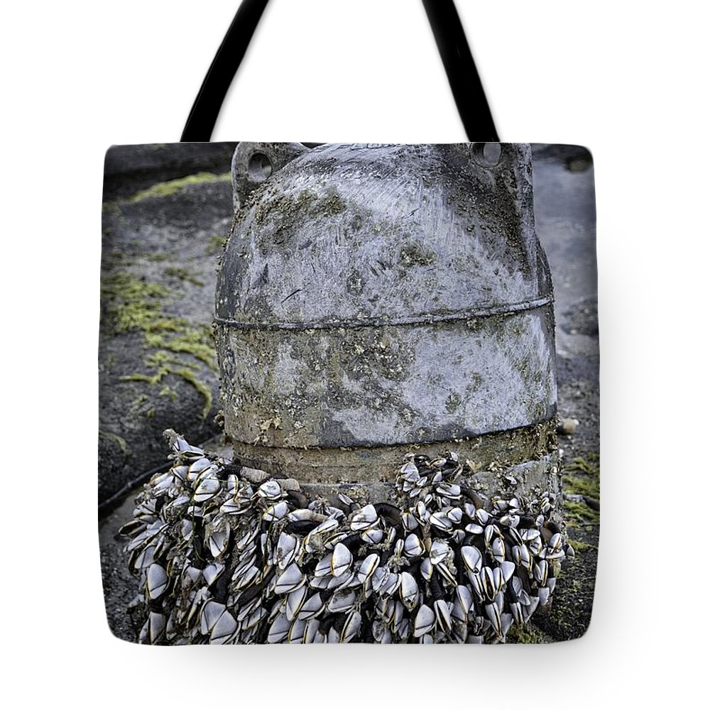 Yachats Tote Bag featuring the photograph Returned From The Ocean by Image Takers Photography LLC - Carol Haddon