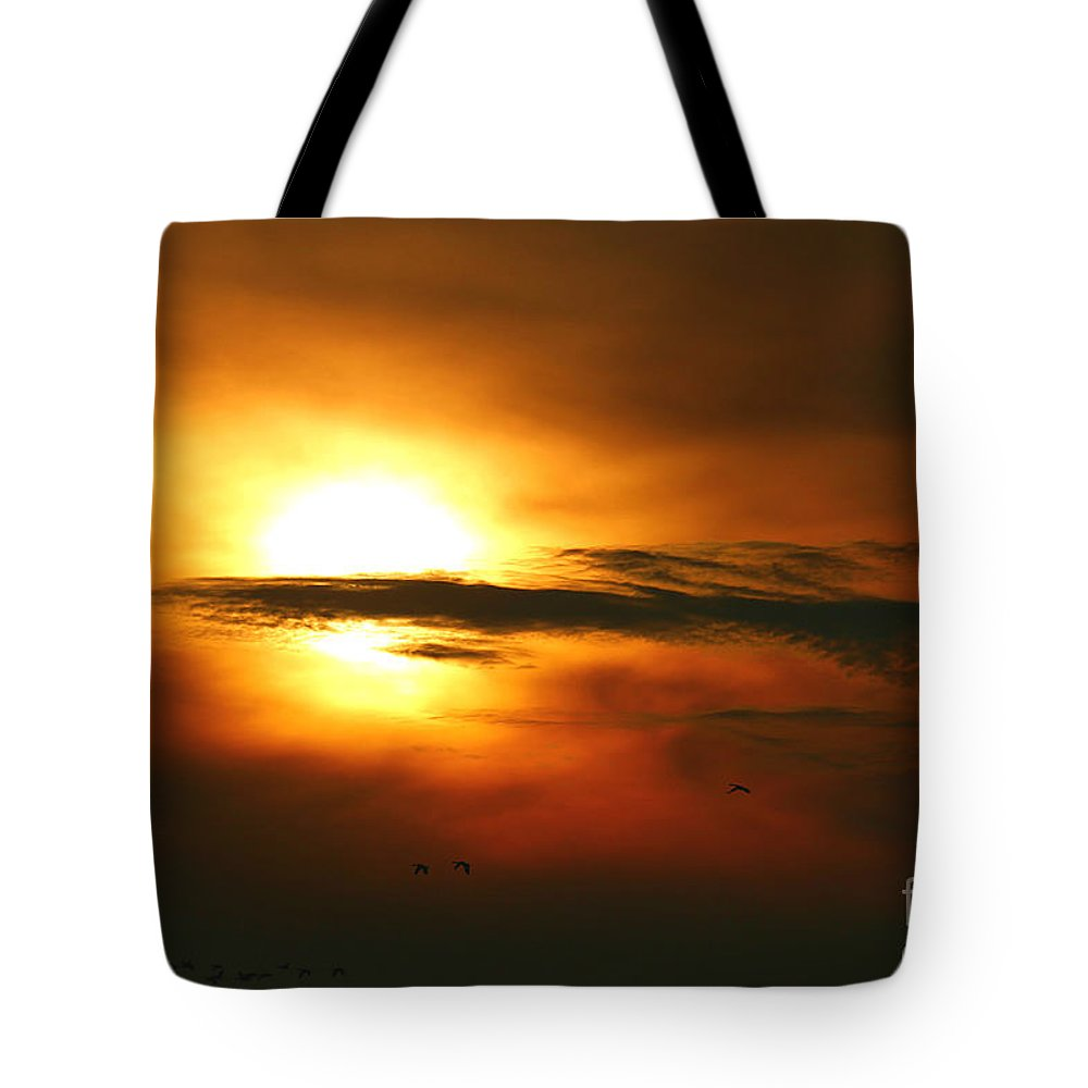 Sunset Tote Bag featuring the photograph Returning Home by Elizabeth Winter