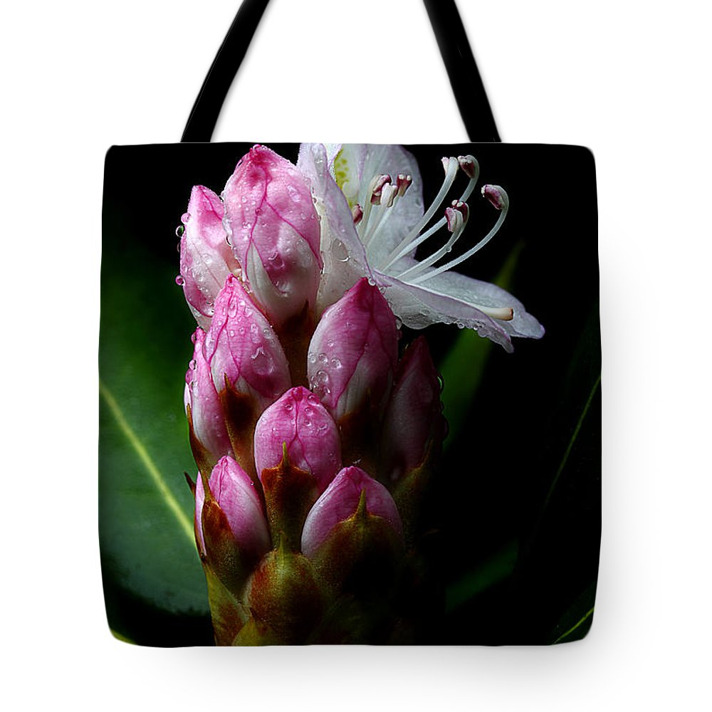 Fresh Rhododendron Tote Bag featuring the photograph Rhododendron Begining by Michael Eingle