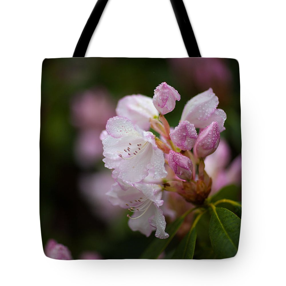 Rhododendron Tote Bag featuring the photograph Rhododendron Enborne by Ralf Kaiser