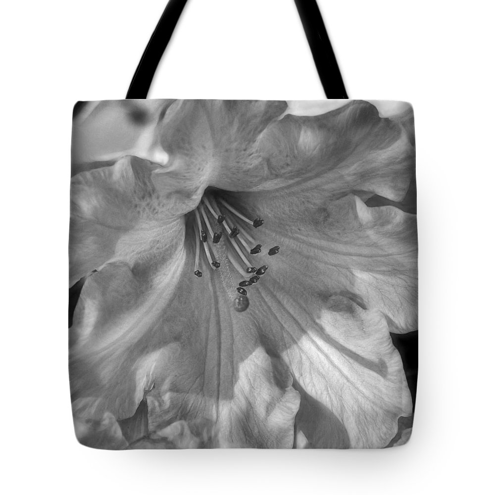 Rhododendron In Black And White Tote Bag featuring the photograph Rhododendron In Black And White by Wes and Dotty Weber