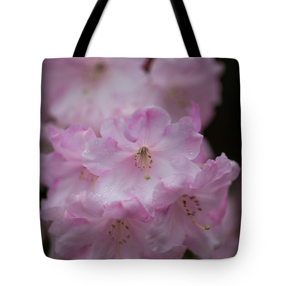 Rhododendron Tote Bag featuring the photograph Rhododendron by Ralf Kaiser