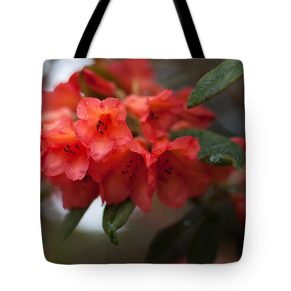 Rhododendron Tote Bag featuring the photograph Rhododendron Sonata by Ralf Kaiser