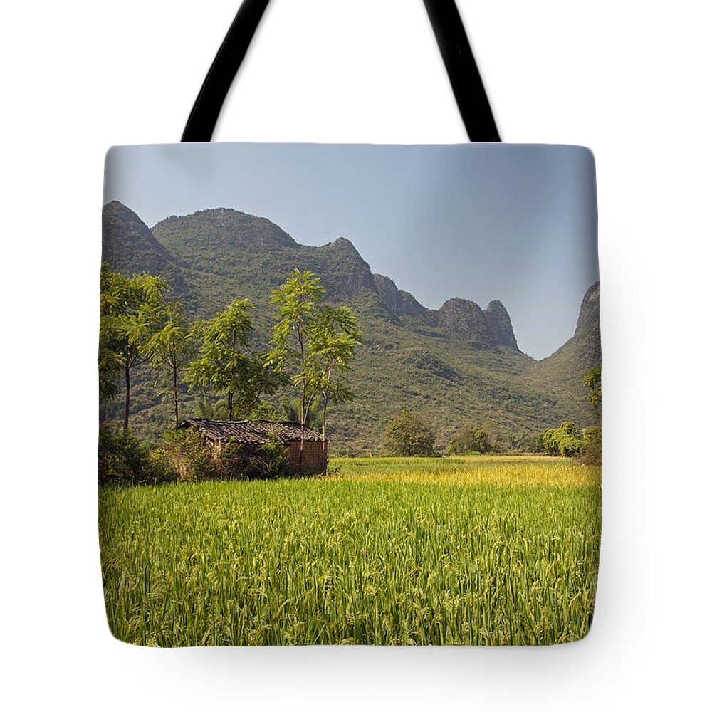 Agriculture Tote Bag featuring the photograph Rice Farm by David Davis