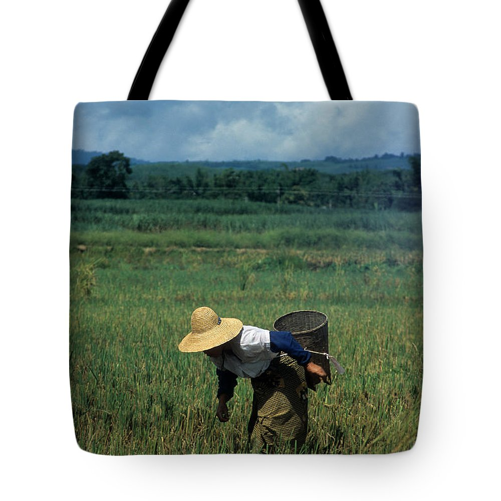 China Tote Bag featuring the photograph Rice Harvest In Southern China by James Brunker