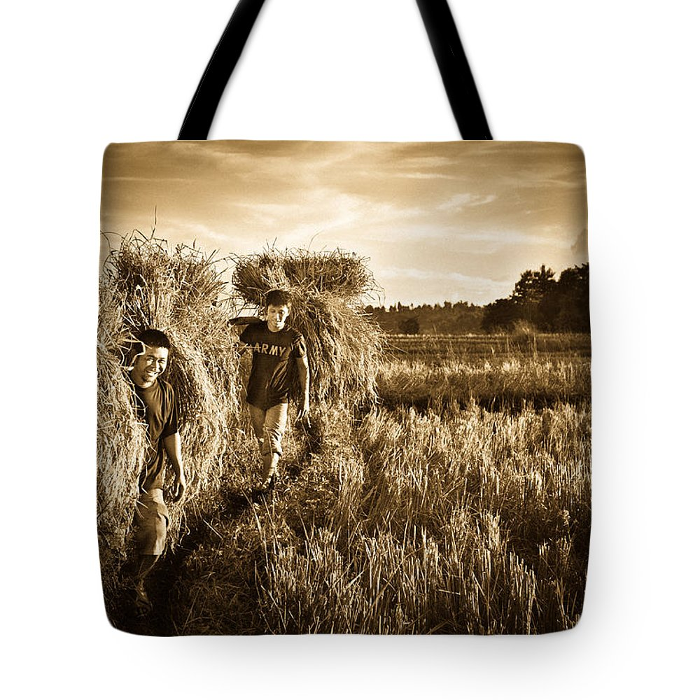 Man Tote Bag featuring the photograph Rice Harvesting by Andrea Timillero