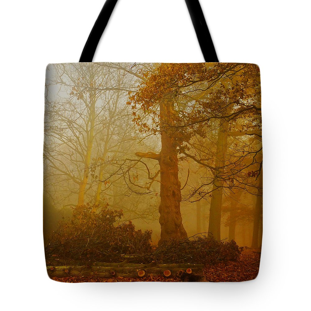 Fog Tote Bag featuring the photograph Richmond Park 11 by Simon Kennedy