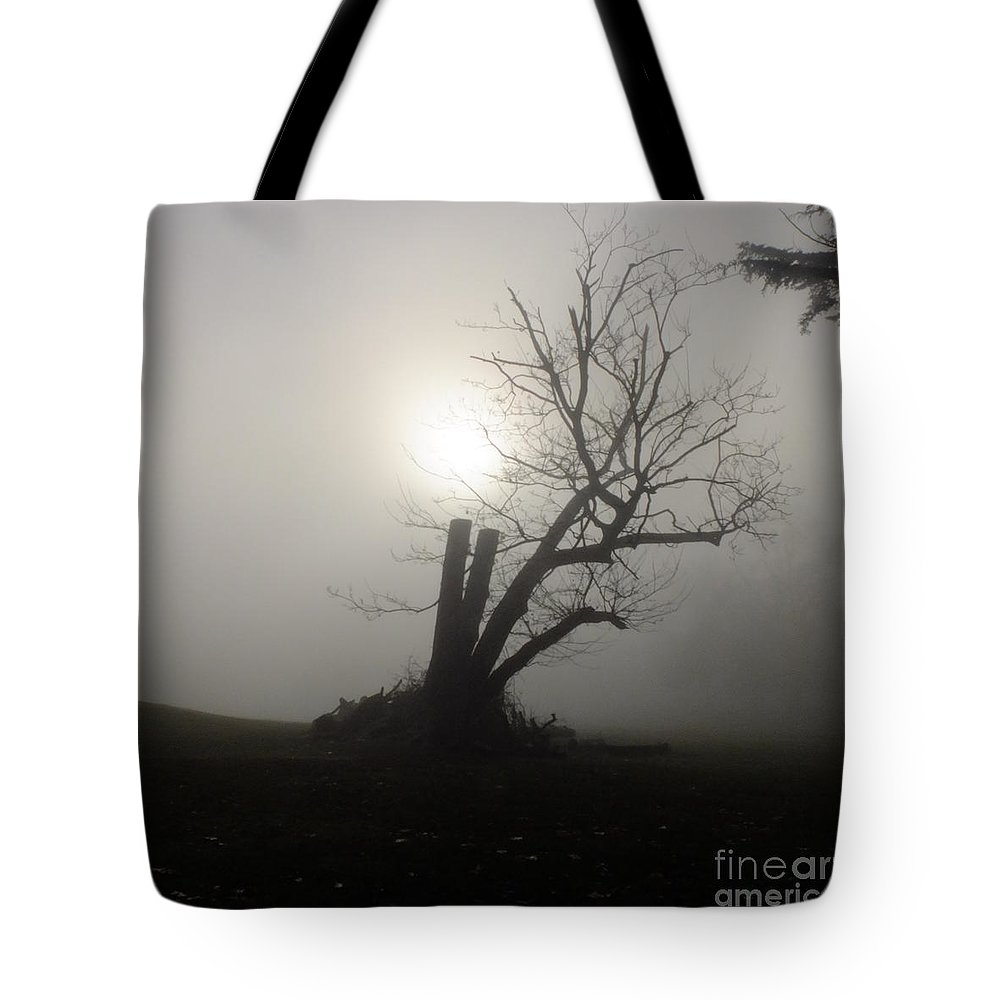 Stumpy Tree Tote Bag featuring the photograph Richmond Park 14 by Simon Kennedy