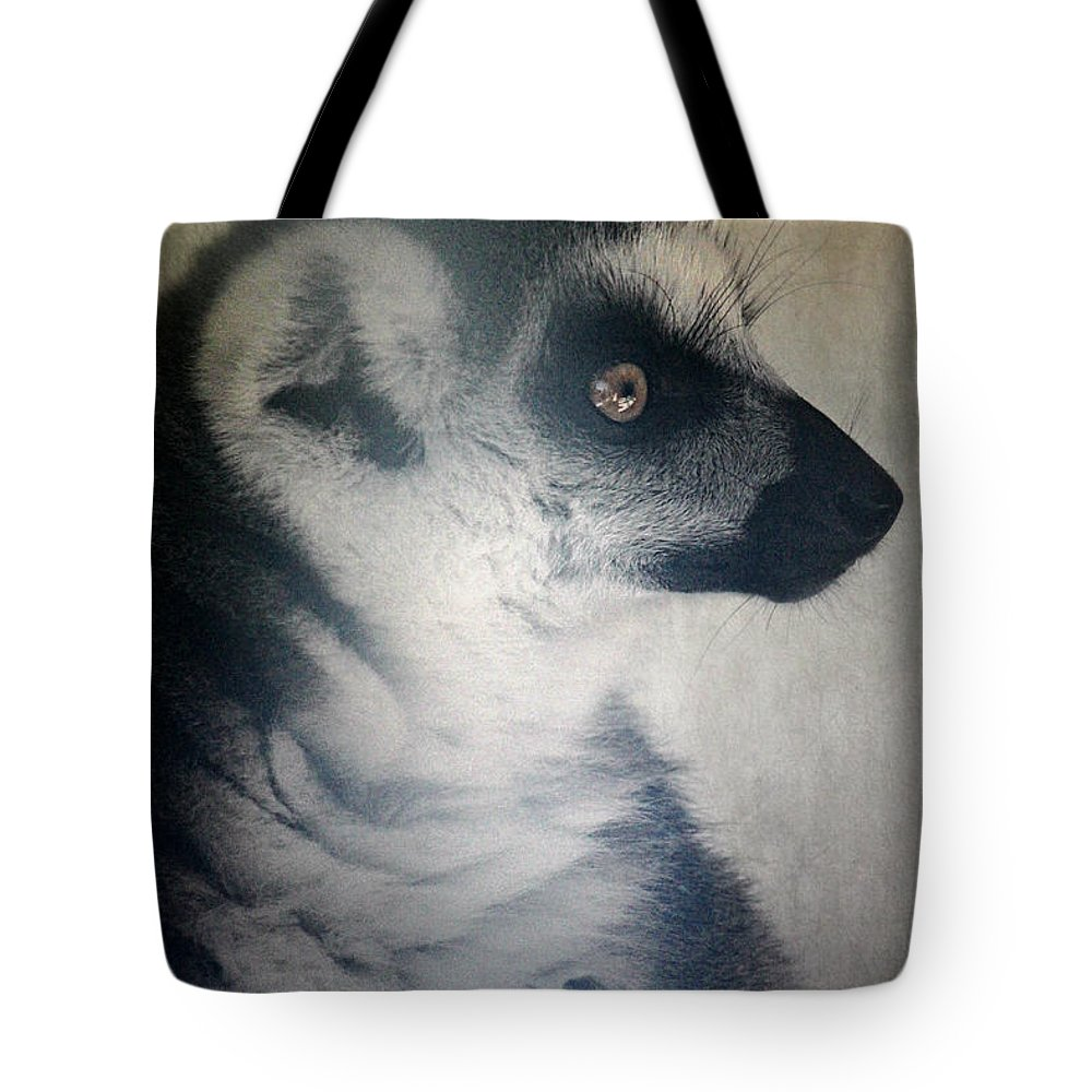 Ring Tailed Lemur Tote Bag featuring the photograph Ring Tailed Lemur by Melanie Lankford Photography