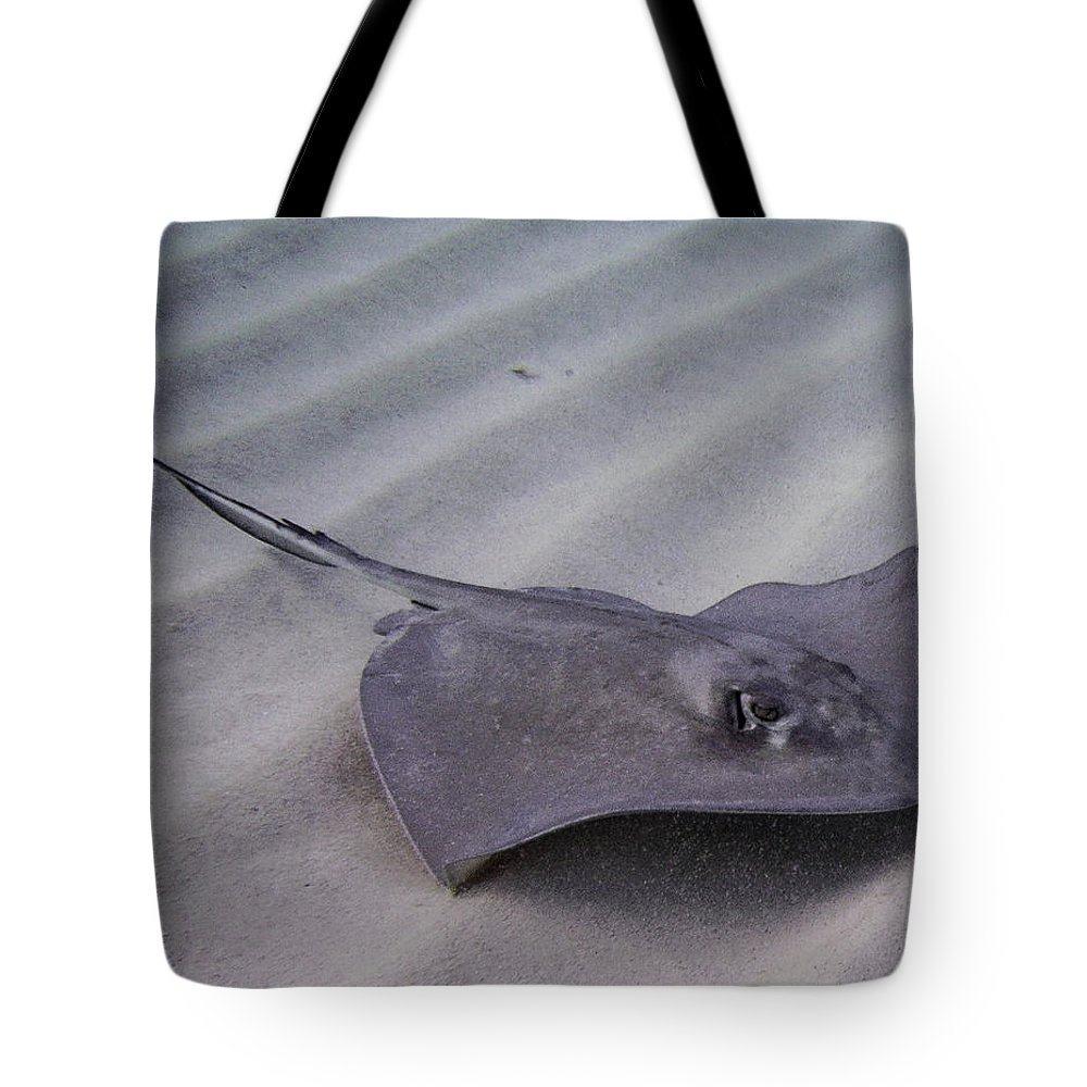 Ocean Tote Bag featuring the photograph Ripple Effect by Terry Melius