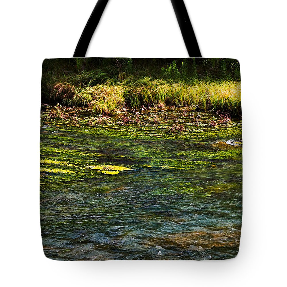Colors Tote Bag featuring the photograph River Colors by Gary Richards