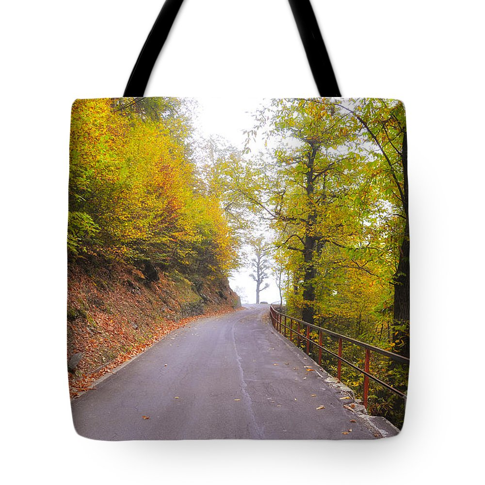 Road Tote Bag featuring the photograph Road With Autumn Trees by Mats Silvan
