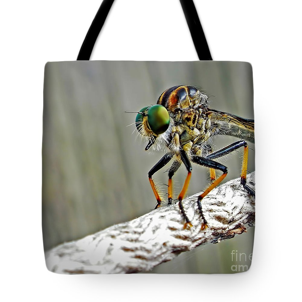 Photography Tote Bag featuring the photograph Robber Fly by Kaye Menner