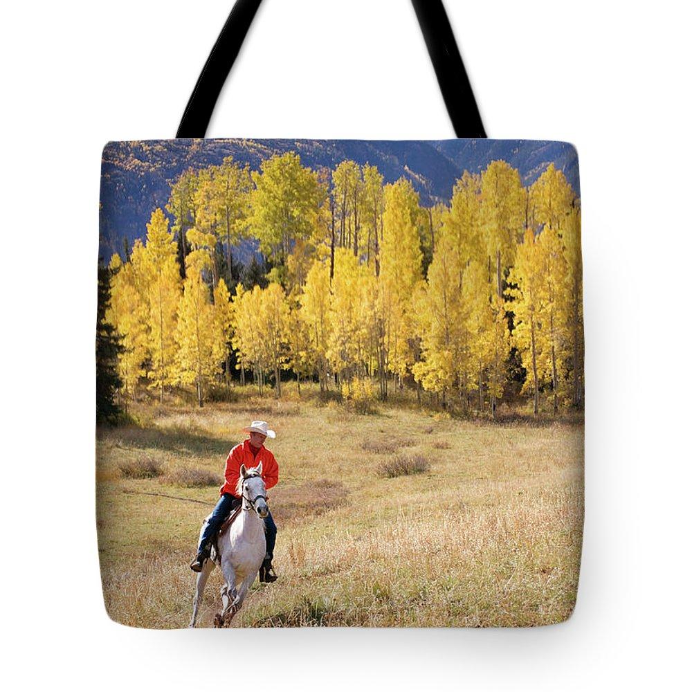 San Juan Mountains Tote Bag featuring the photograph Rocky Mountain Cowboy by Amygdala imagery