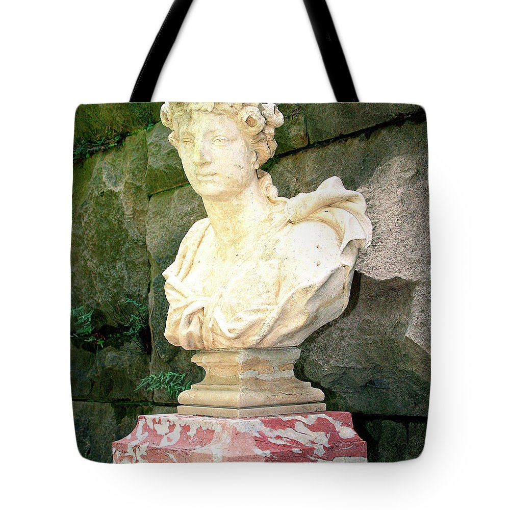 Asheville Tote Bag featuring the photograph Roman Biltmore Asheville Nc by William Dey